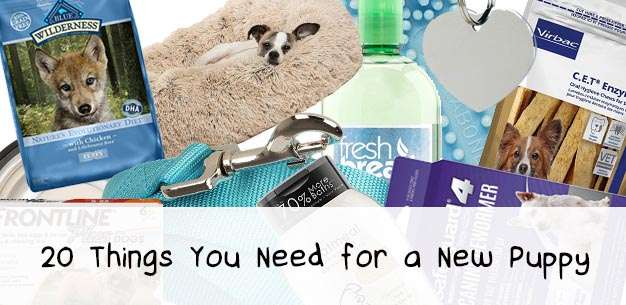 20 Things You Need for a New Puppy
