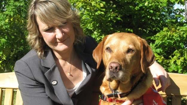 Daisy Detected Breast Cancer in Her Owner Claire Guest