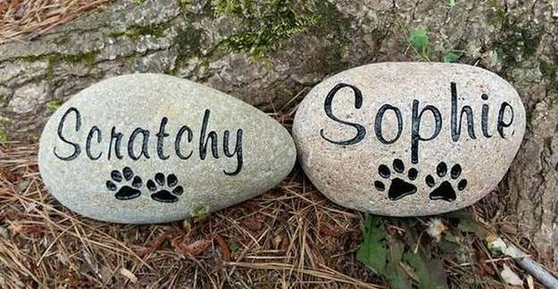 Hold a Memorial Service for Your Sheltie