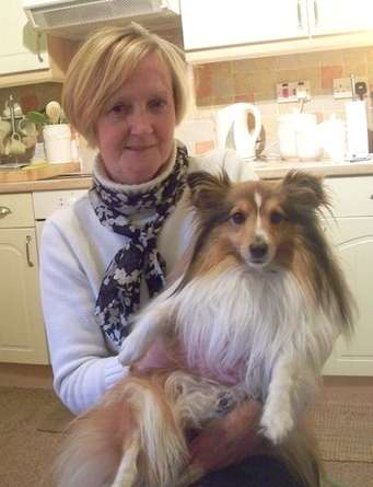 Lady with Sheltie