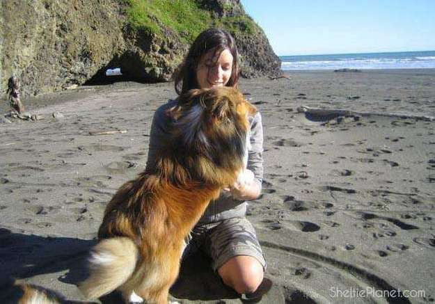 Me and my Sheltie Piper on the beach